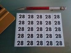 Startnummer Modellbau 1:18