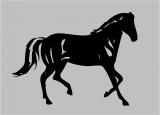 Pferd a-238 Aufkleber