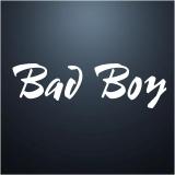 Bad Boy 3